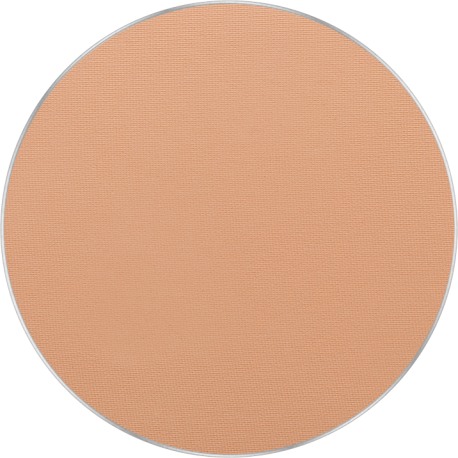 Freedom System Pressed Powder 13
