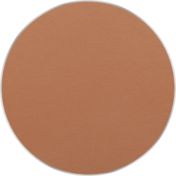 Freedom System Pressed Powder 14