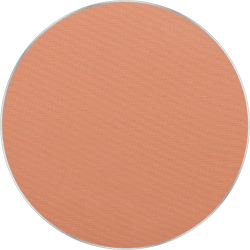 Freedom System Pressed Powder 10