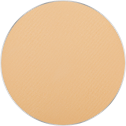 Freedom System Mattifying System 3S Pressed Powder Round 302