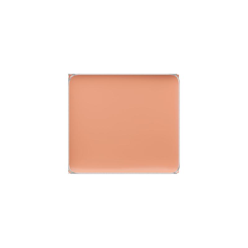 Freedom System Camouflage Concealer 103