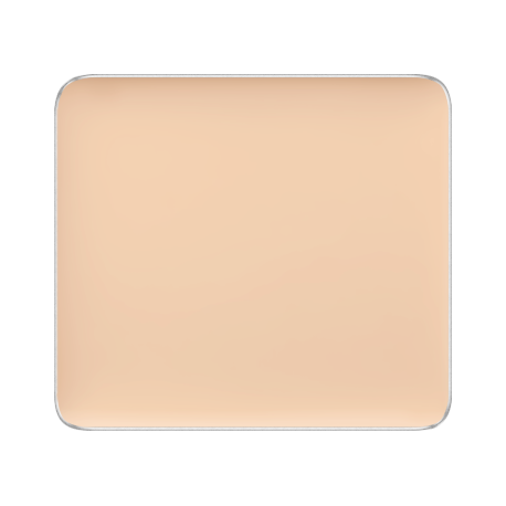 Freedom System Camouflage Concealer 106