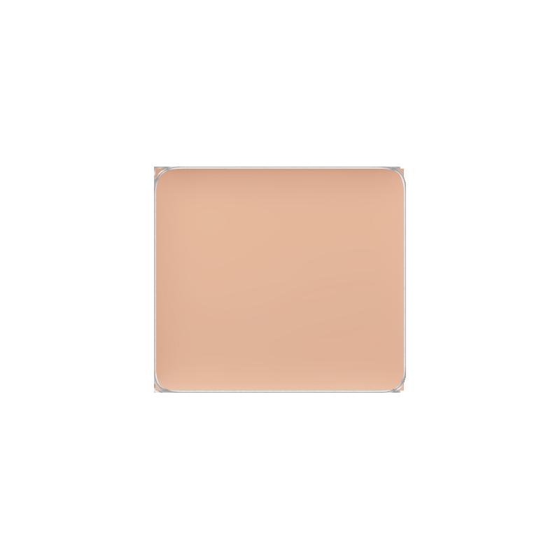 Freedom System Camouflage Concealer 107