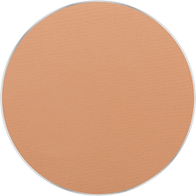 thumbnail Freedom System AMC Pressed Powder Round 101